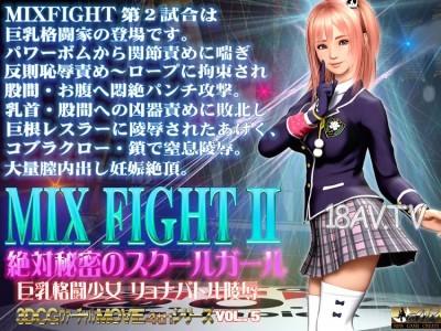 [3D]MIX FIGHT2絶対秘密のスクールガール [夜桜字幕组]