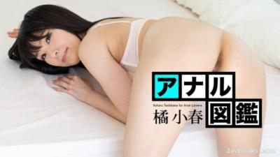 Carib 020620-001 橘小春 アナル図鑑