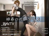 [3D]姉弟のカンケイ3 [夜桜字幕组]